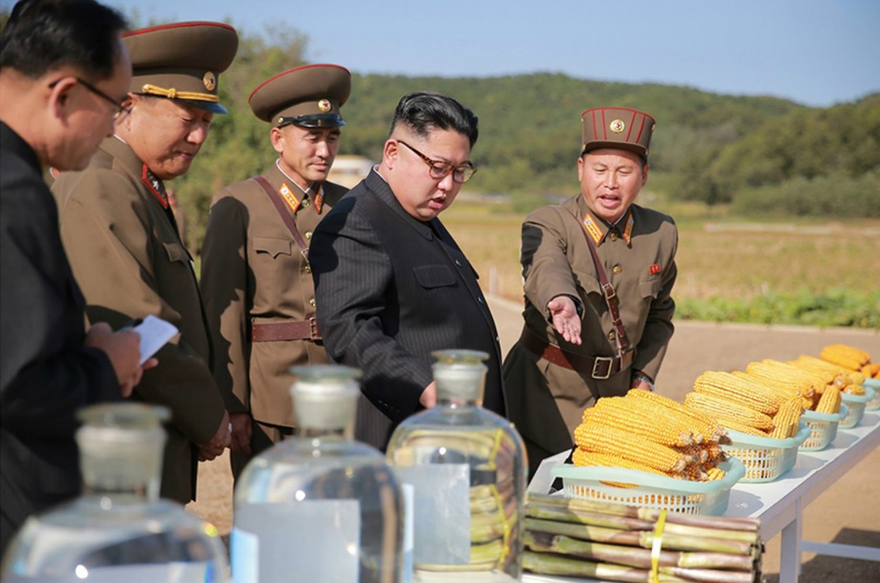 Товарищ Ким Чен Ын руководил на месте фермой № 1116 при войсковой части 810