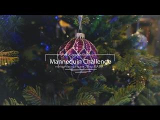 Mannequin Challenge новогодний корпоратив 2018 ОПУС контракт