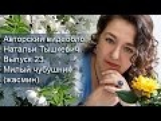 Авторский видеоблог Натальи Тышкевич. Выпуск 23. Милый чубушник (жасмин).