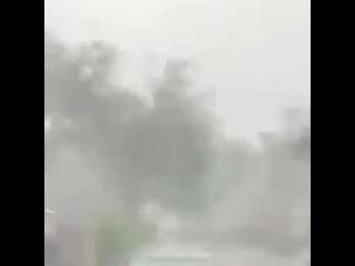 Нормально так жмыхнуло. Женщина из Флориды  засняла необычную молнию.
