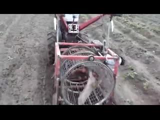 Интересный прибор для сборки картофеля
