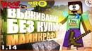 Майнкрафт выживание без купюр Из грязи в князи Мой путь к богатству в minecraft 1 14