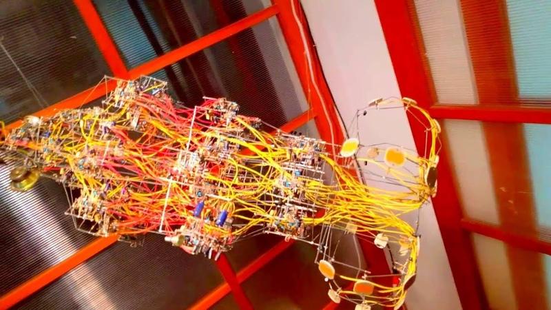 AANN Artificial Analog Neural Network by Phillip Stearns (seen at Alt-ai)