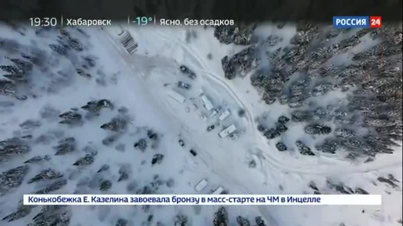Санитары леса. Специальный репортаж Александра Лукьянова - Россия 24
