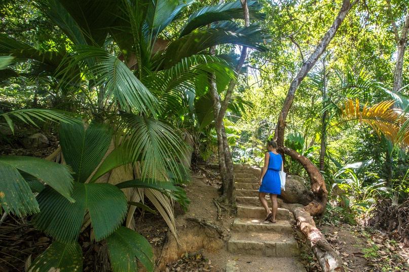 10 причин поехать на Сейшелы, изображение №8
