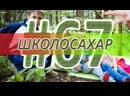ШКОЛОСАХАР 67 ОСОБЕННЫЙ ВЫПУСК В CSGO