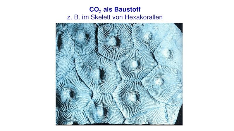 Friedrich Karl Ewert CO2 verringern das Gegenteil wäre richtig am 24 11 2018