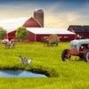 Натуральное хозяйство и фермерство