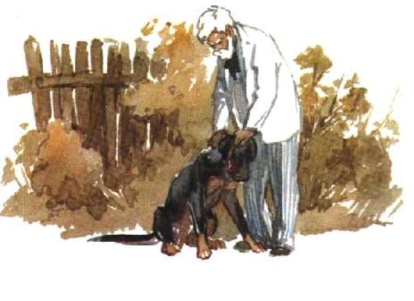 картинки арктура гончего пса советские