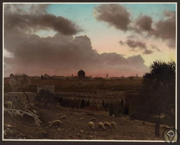Цветные фото Палестины, 1919 г часть 1