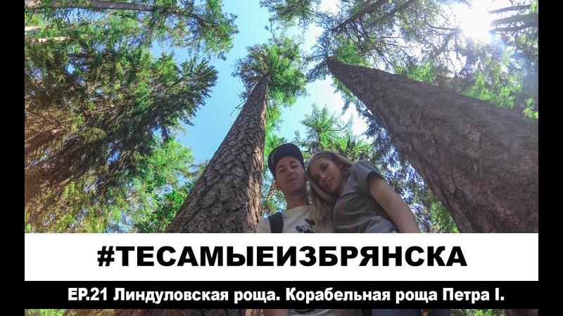 ЭПИЗОД 21 Линдуловская роща Корабельный лес Петр I