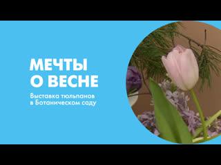 Мечты о весне. Выставка тюльпанов в Ботаническом саду