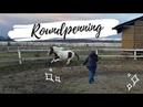 Как научить лошадь уважать человека. Работа с лошадью в бочке. Метод Клинтона Андерсона