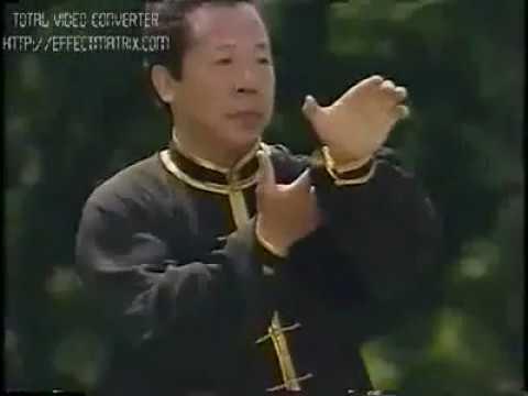 Фэн Чжэнбао - синъи цюань Fen Zhenbao xingyi quan