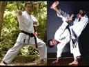 Shotokan Kihon