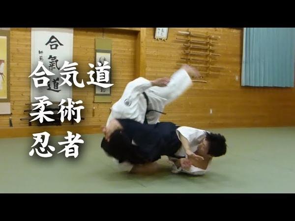 合気道と柔術24525;者 AikidoJiu-JitsuNinja techniques