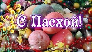 🌿🌸🐣 С Пасхой! Христос Воскресе! Яркое  и красивое поздравление со Светлой Пасхой!