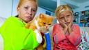 Наш кот СЛОМАЛ Лапу 😭 ? Как развлекается ПАПА Николь когда ОДИН ? ВЫБРАСЫВАЕМ СТАРЫЕ ВЕЩИ