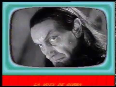 Sacher Musak Gorba The Chief