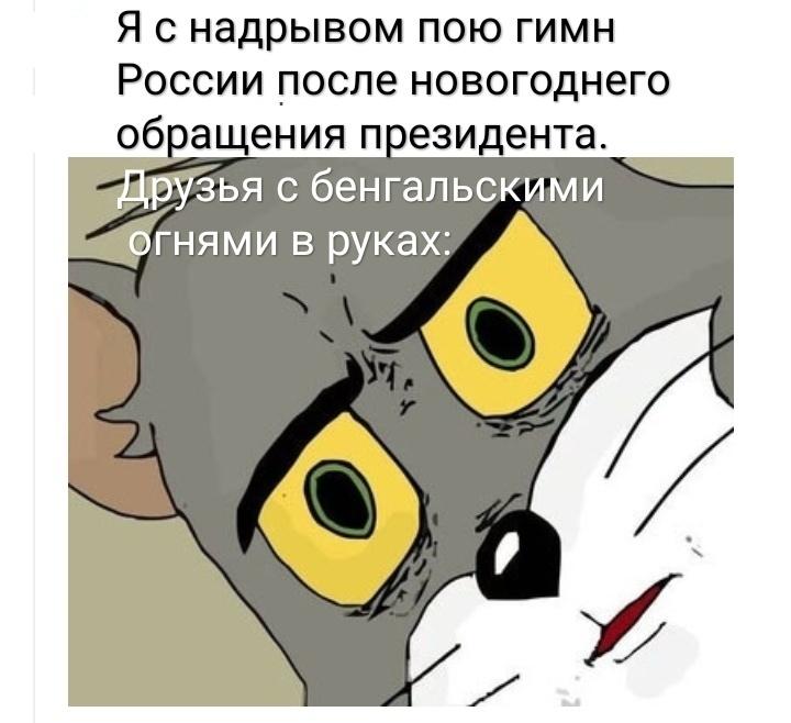 Ошарашенные котики в комментариях