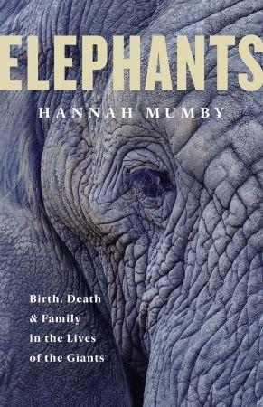 Elephants - Hannah Mumby
