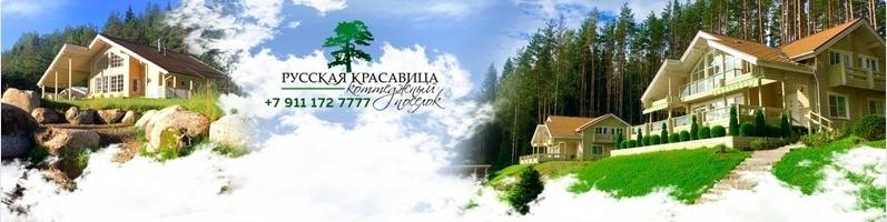 Кейс: Клубный коттеджный поселок «Русская Красавица», изображение №2
