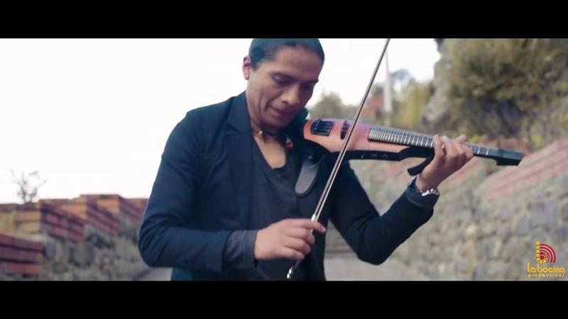 Violino Moskau cover