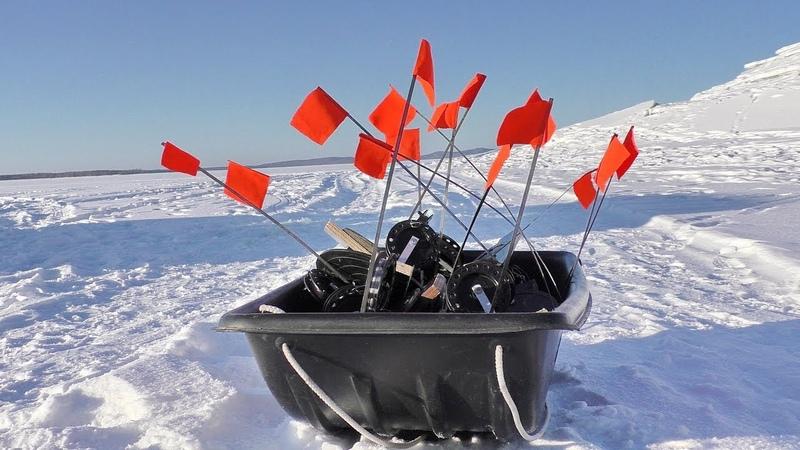 Вот это рыбалка Щуки на жерлицы Талакан Pike pecks in winter