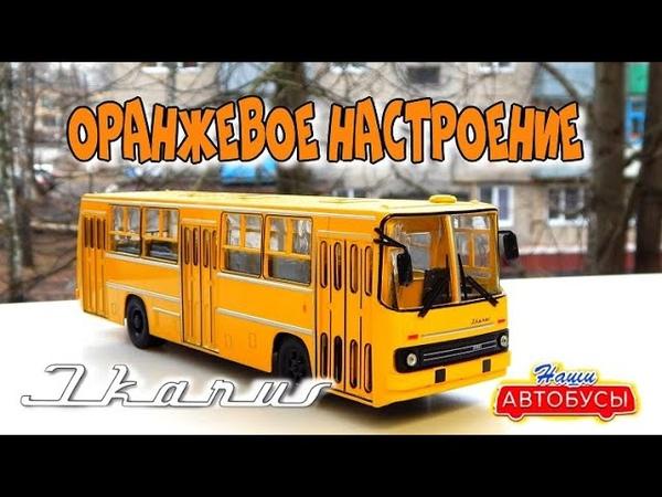 Икарус 260 Наши Автобусы №4 Modimio Ikarus 260