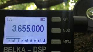 Belka DSP vs. Degen DE1103 on 80 m HAM Band