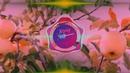 Яблуневий цвіт - Коля Веремко (Live-версія)