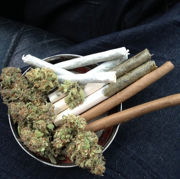 Как собирать сигарет для конопля как варить коноплю для курения