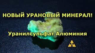 Мы открыли НОВЫЙ урановый минерал! | Discovery of a NEW uranium mineral