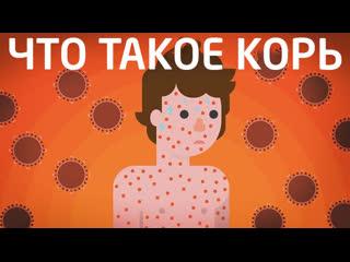 Что такое Корь - делать прививку или нет   Kurzgesagt на русском   kvashenov