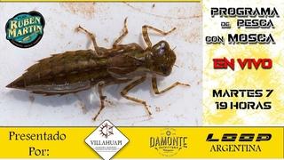 Odonatos Pograma en vivo de atado y pesca con mosca Loop Argentina