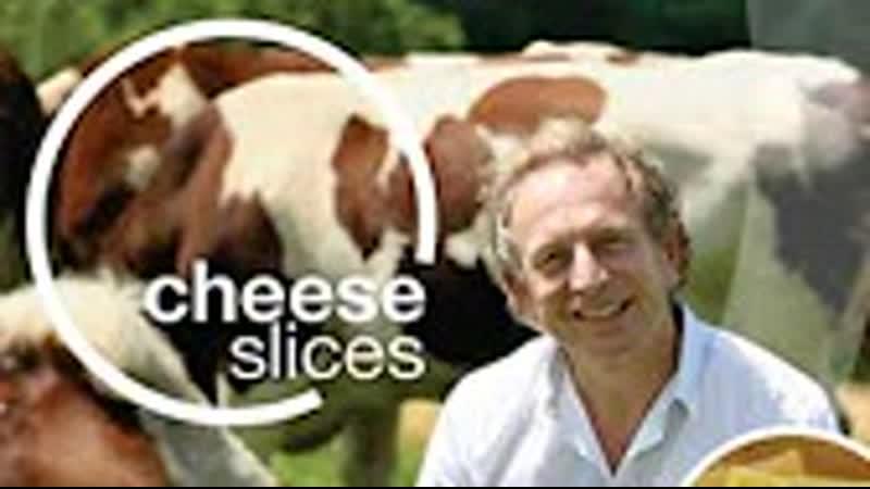 Вкус сыра Германия