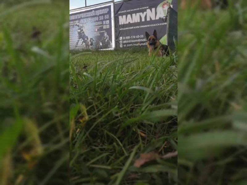 MamyNat_32.mp4