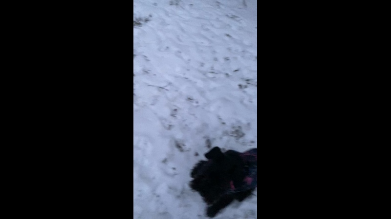 Видео от Натальи Тищенко