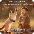 Фотоальбом Алёны Куликовой