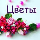 Фотоальбом Нины Петровой