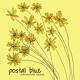 Postal Blue - Three Words