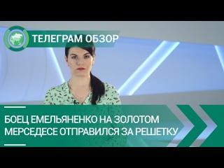 Боец Емельяненко на золотом мерседесе отправился за решетку. Телеграм обзор. ФАН-ТВ