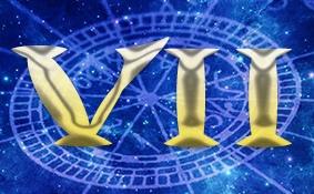Основы Астрологии. Венера в Домах гороскопа., изображение №7