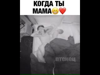 Хитрая хозяйка () Вот почему мамы не высыпаются