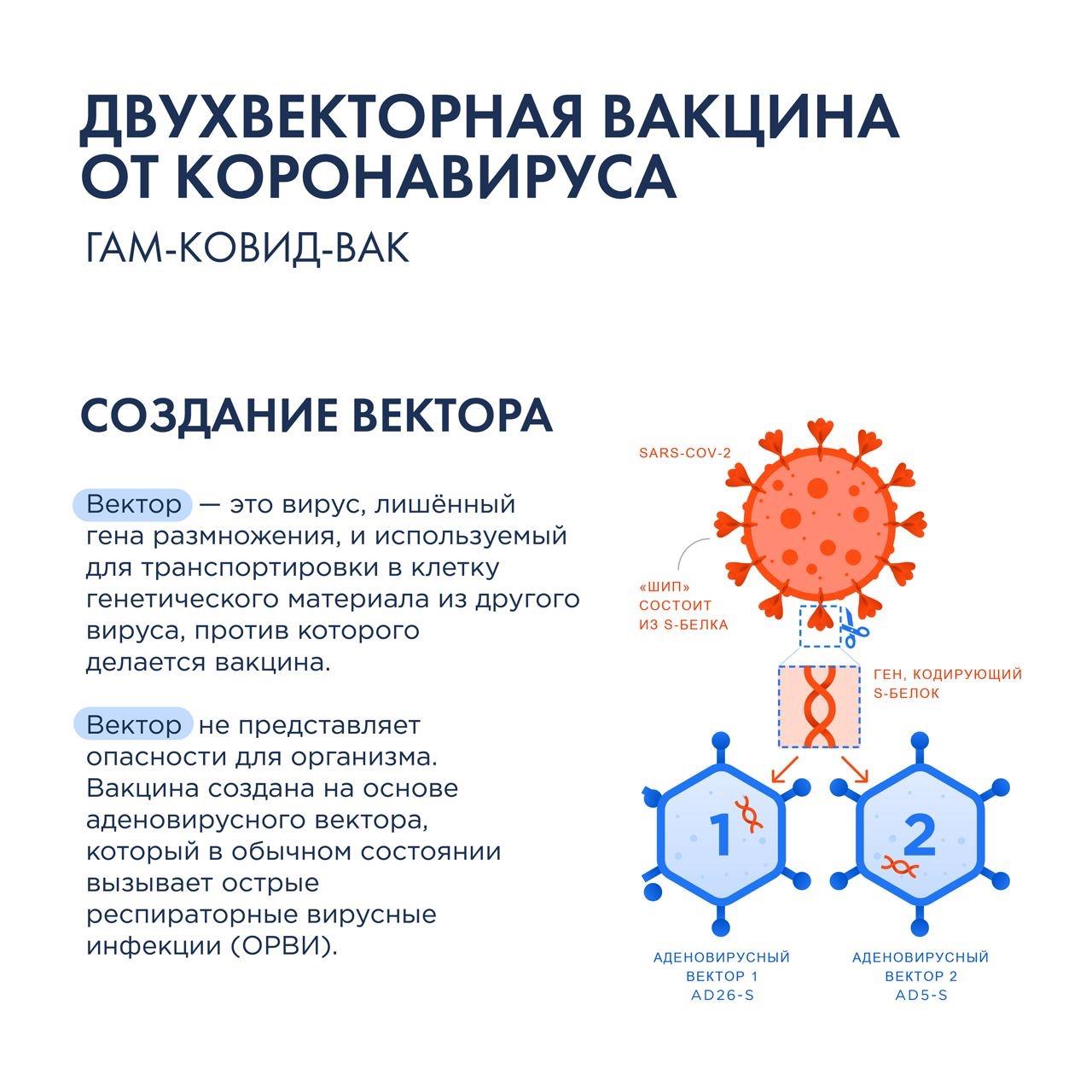 Второй этап вакцинации: для чего она и почему это важно? nnВторой этап вакцинации - введение второго компонента первой зарегистрированной в мире вакцины против COVID-19 Гам-Ковид-Вак (так же известная как Спутник V)