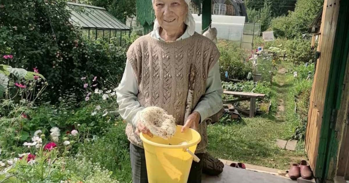 В Удмуртии спасли заблудившуюся в лесу пенсионерку-грибника