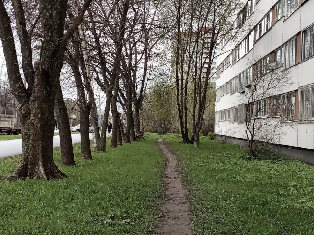 Уже дома)