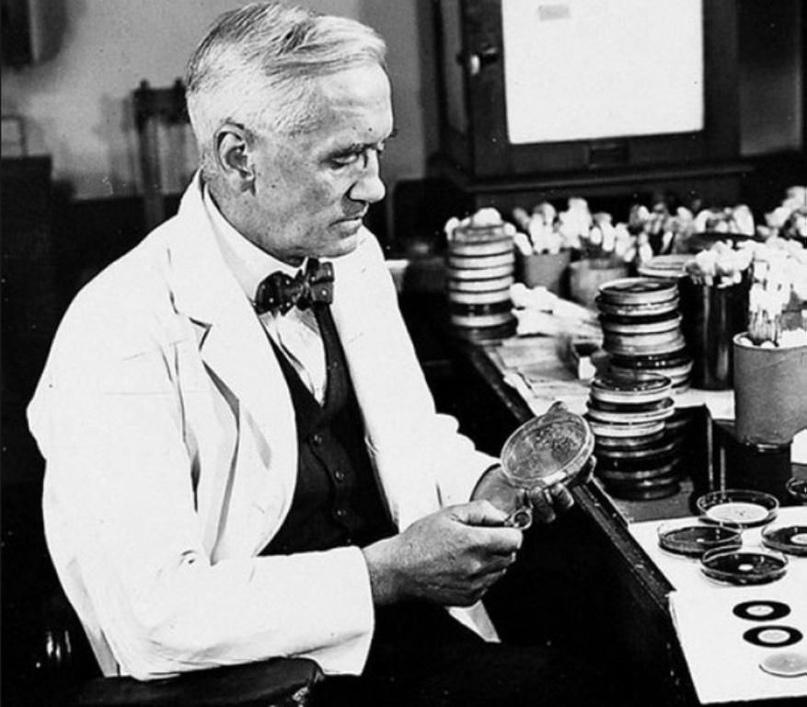 Как на самом деле был открыт пенициллин