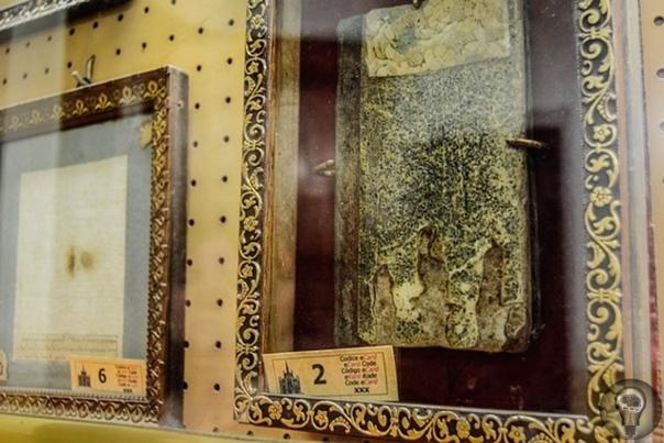 Музей душ Чистилища в Риме: следы призраков В Риме, загадочной и удивительной столице Италии, всегда найдется, что посмотреть туристу. Тут на каждом шагу встречаются какие-то