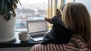 У части клиентов домашнего интернета в ближайшие дни отключат связь